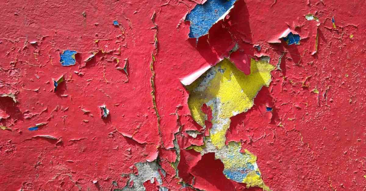 How To Fix Ripped Off Wall – Step By Step Guide 2021